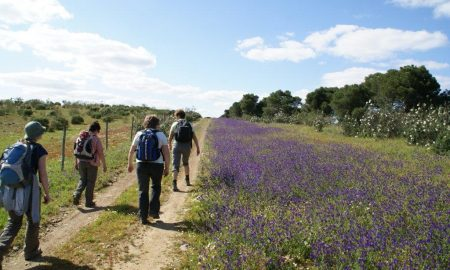 Guadiana Valley Walking & Hikking